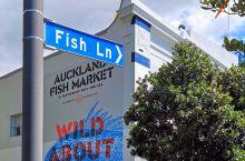 来奥克兰怎能不吃一顿海鲜?奥克兰本身就是一座滨海城市,海鲜产品真可以说是唾手可得,市中心也不乏有好的