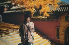 秋天的少林寺还是很美 但是平心而论 这种景区我自己不太推荐 非常商业化 如果不是看到门口银杏 觉得没