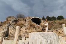 在欧亚大陆连接处的星月国,一个全民宠猫的国度,一个到处充满了温馨的星月童话的国度。 不论在哪里,只要