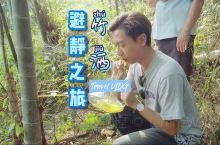 竹林里尝新鲜竹酒 | 江西赣州虔心小镇特产  避静之旅,肯定少不了喝酒。这次在虔心小镇可以亲身前往竹