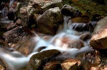 流水不止,生命不息。 浙江花岩国家森林公园位于瑞安市西部,飞云江北侧,是瑞安市寨寮溪风景名胜区的重要