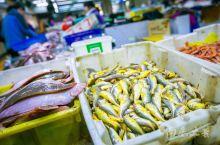 嵊泗旅游一定要逛的菜园镇海鲜市场,整个市场绝大部分是东海小海鲜,这里渔船回港近,大部分是活的,小白在
