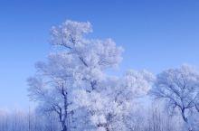 冬天的雪!!!!!!!!!!!!!!!!!!!!!!!!!!!!!!!!!!!!!!!!!!!!!!