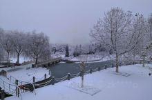 雪后永济公园