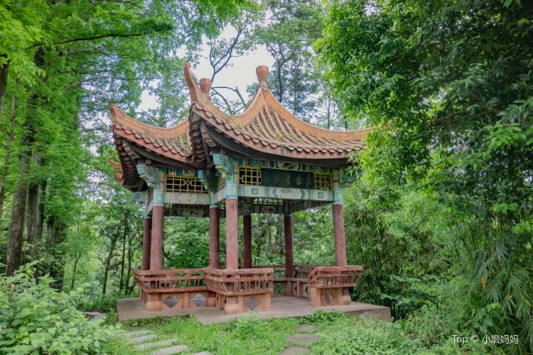 Zhangjiashan Park1