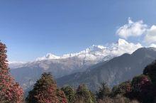 【尼泊尔布恩山徒步行】进入ABC布恩山徒步,注定是一场艰苦的旅行。不洗澡,无信号,身上衣服干了又湿,
