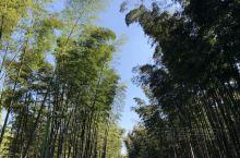 蜀南竹海(Bamboo Sea)位于四川省宜宾市江安、长宁两县毗连的连天山余脉,距宜宾市81公里,距