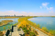 大安湿地公园越来越美丽了,蓝天白云树发出奶绿的枝桠漂亮的颜色,
