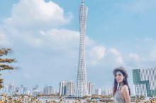与广州塔合影最佳打卡点,大片向日葵开得正美 要看清接近500米的广州塔并不容易,虽然广州塔苗条一直有