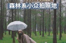 春水初生之时,赴一场春林之约   目前疫情稍有缓和,不少人开始到公园里去放松一下,呼吸一波新鲜空气