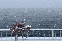 日本🇯🇵北海道