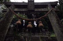 雨天的神社也很有氣氛 這裡真的是每一次都有不同的體驗!!  What should I explai