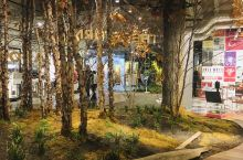 Oakridge Centre内部有个新展馆,叫Unwritten,展示着城市,尤其是Oakridg