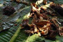 一家人去中国、缅甸、老挝,三国交界的地方烧烤野炊。