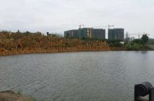 遂溪孔子文化城
