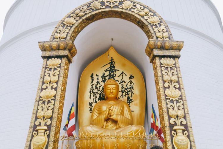 Peace Pagoda4