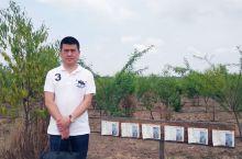 柬埔寨沉香树基地