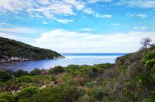 微风湾 Vivonne Bay 位于南澳袋鼠岛海豹湾的西侧,微风湾被悉尼大学教授誉为全澳洲最美的海滩