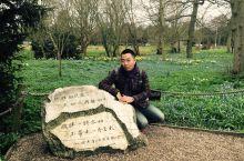 徐志摩和他的故事