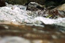 在天然大氧吧川西竹海奔跑是什么样的感觉?