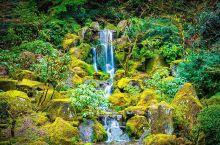 在美国感受日本文化太奇妙了!波特兰日本花园!  毕业之后我就到美国来读研了,美国的课程安排和国内差别