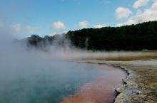 新西兰北岛怀,欧,塔普地热温泉仙境,间隙泉,泥浆火山,这里拍照巧遇佛光。