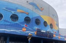 青岛海昌极地海洋世界看极地动物表演,青岛奥帆出海驾驶帆船,美好的一天!  假期去哪里总是件让人发愁的