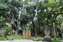瑞丽地处云南西部中缅边境,三面与缅甸接壤,距昆明890公里,从昆明乘坐飞机约50分钟到芒市,再从芒市