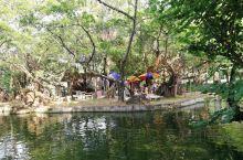 炎炎秋日茂名市民的好去处  在茂名市中心有一个很阴凉的公园,叫春苑公园,据说是茂名最古老的公园之一,