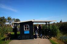 莱茵河之旅——小孩堤防风车群,列入联合国科教文组织世界遗产名录的荷兰最知名景点之一(7)。