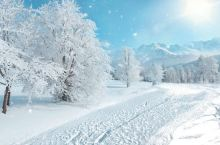 美丽的雪景