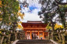 灯笼节去奈良玩别有一番风味.   每年2月3日,奈良的 春日大社 都会把寺院内的3000余盏灯笼全部