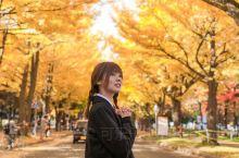 北海道最美的银杏大道  北海道大学  穿搭:日系校服搭配超短裙,青春感满满。穿不过膝的长筒黑袜搭配