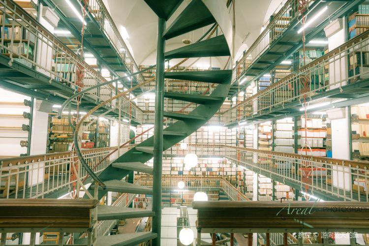 Det Kongelige Biblioteks Have4