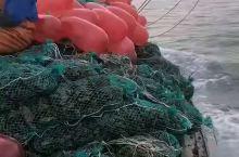 乳山牡蛎山采取筏式养殖方式。养殖区域主要分布于西至乳山口、东至浪暖口的开阔水域内。牡蛎产业已成为乳山