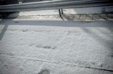 最妙的是下点儿小雪啊!雪后初晴,天空一碧如洗,大地白雪皑皑,走在小路上,发出咯吱咯吱的声音,印出一串