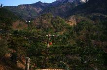 初冬的暖阳,照着天柱山峰,亦晒着农家美味。