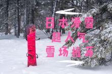 志贺高原烧额山滑雪场 全攻略 王子集团旗下的烧额山滑雪场,从东京出发3个多小时就能抵达 交通: 东京