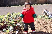 《来自杭州的诱惑:小乖乖周岁啦……》  我是孤独浪子,希望我的拍拍让您有所收获。 漫游神州31载,已