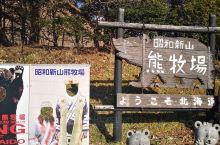 昭和新山的熊牧场是大多数游客都会来打卡的地方,有些一日游行程的游客也会在这边吃午饭。个人觉得一般般吧
