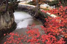 松岛象征性地标五大堂 矗立于浮岛上的五大堂是松岛的象征性地标,最早为西元807年由田村麻吕东征所建,