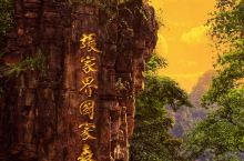 【寻见潘多拉星球,探觅仙踪隐林下的张家界】 武陵源的风光早已崭露于世,每当走入这处世界遗产地时,便总