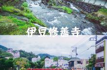 🇯🇵小众旅行   伊豆·修善寺 🇯🇵修善寺是一个地名,而不是一座寺庙的名称,这里是一个著名的温泉胜地