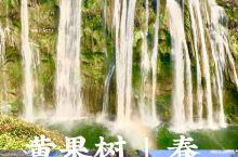 国民景点黄果树0元打卡小学课本的黄果树瀑布和西游记里的取景地!  疫后重开的国民景点贵州  黄果树·