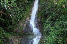 背崩瀑布是墨脱的一道绮丽风景,想必来到这里观其真面貌的游客会印象深刻。墨脱的山林常年水气充沛,特别在