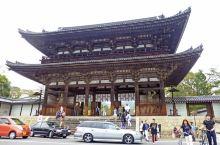 跟龍安寺的庭園完全不同感覺,整棟房屋被庭園環繞,人被山水包圍,好美、好優雅的感覺!  仁和寺是日本真