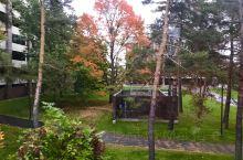 雨中的秋季