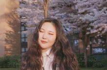 就近享受一下春天吧 温哥华每年四月份的樱花季我能吹一辈子!小区附近很多樱花树,quarantine的