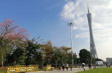 #广州塔#广州地标# 广州塔又称广州新电视塔,昵称小蛮腰。 位于广州市海珠区(艺洲岛)赤岗塔附近,距
