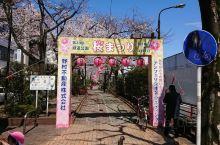 三月末的东京江东区,隐隐风寒,樱花绽放,紧张的工作中,一份浓浓的春意。